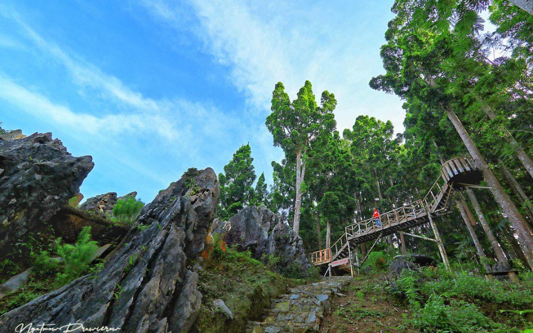 Watu Desel, Pesona Bukit Batu Karang di Banjarnegara