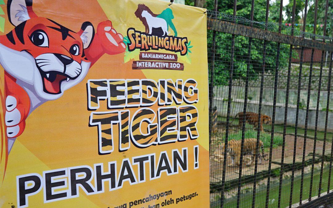Yuk! Berwisata Ke Serulingmas Banjarnegara Interactive Zoo